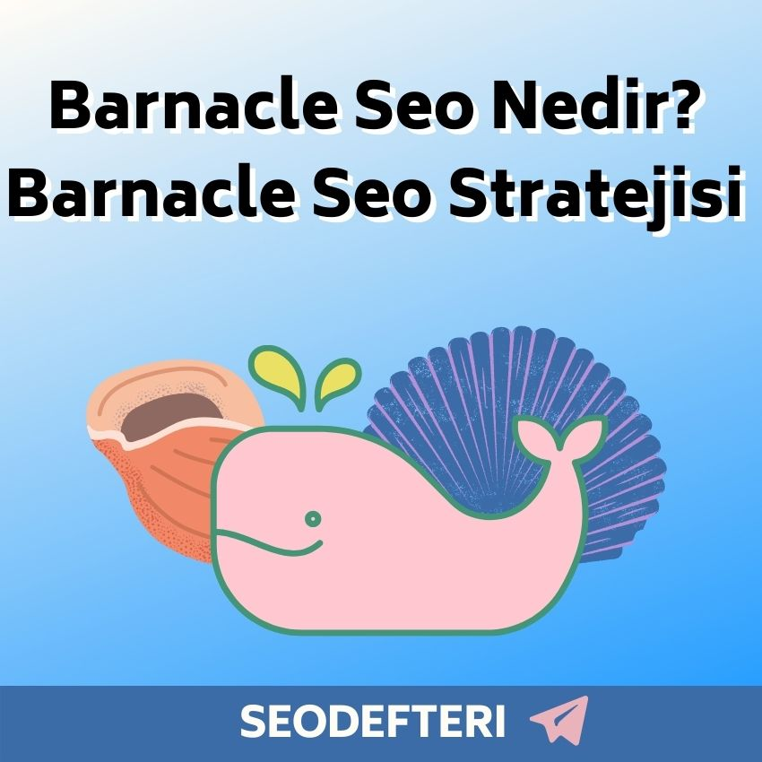 barnacle-seo-nedir-barnacle-seo-stratejisi