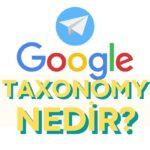 google-taxonomy-nedir-nasil-kullanilir