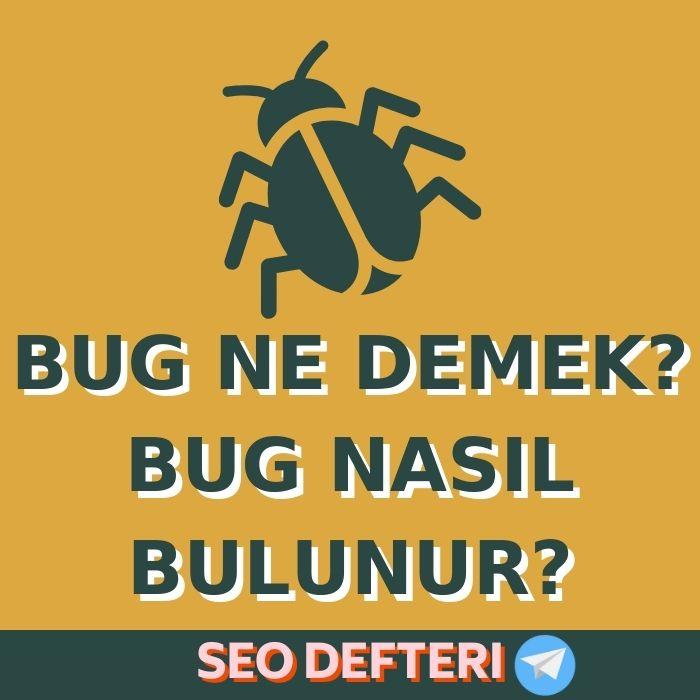 bug-ne-demek-bug-nasil-bulunur